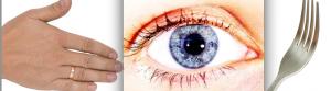 2Hand:Eye:Fork