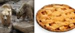 12Bears:Pie