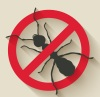 insects icon-05